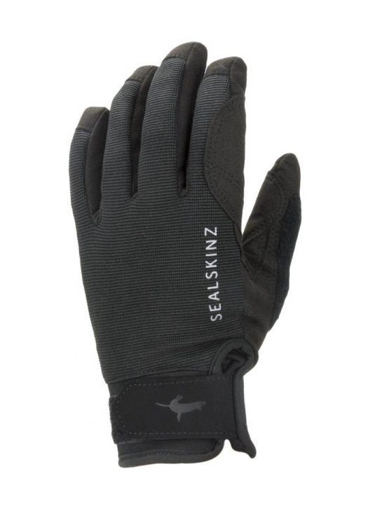 Sealskinz Waterproof All Weather Glove 1